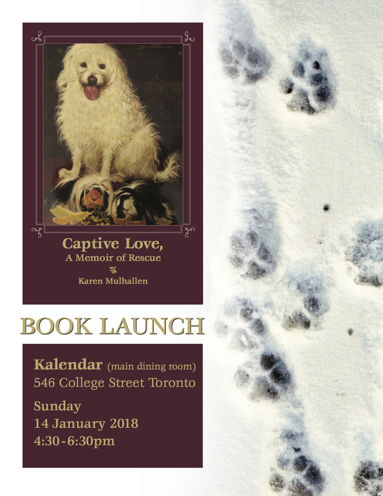 Captive Love Book Launch January 2018